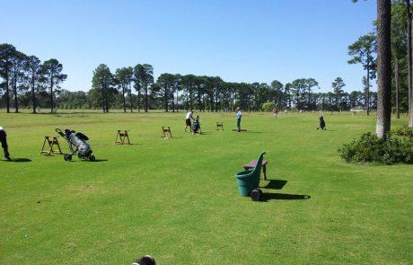 golf pinares