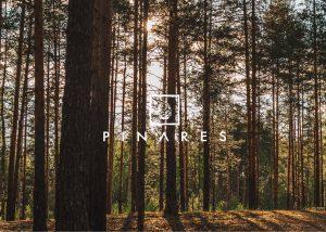 Emprendimiento - Pinares